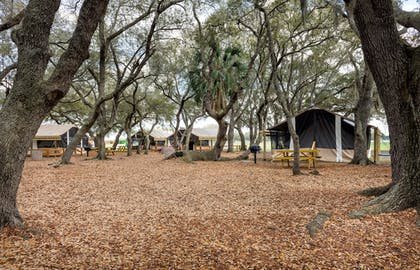 Property Grounds | Westgate River Ranch Resort & Rodeo