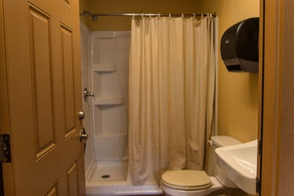 Bathroom | Westgate River Ranch Resort & Rodeo