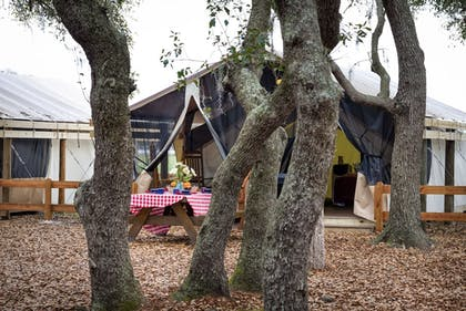 BBQ/Picnic Area | Westgate River Ranch Resort & Rodeo