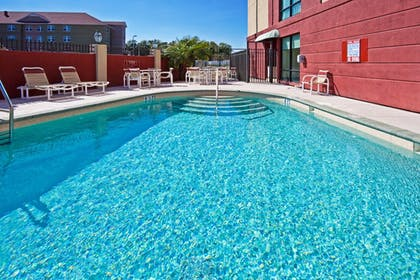 Pool | Holiday Inn Express Hotel & Suites Tampa Northwest - Oldsmar