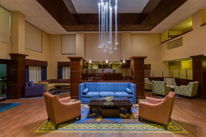 Lobby | Holiday Inn Express Hotel & Suites Tampa Northwest - Oldsmar