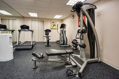 Fitness Facility | Holiday Inn Express Hotel & Suites Tampa Northwest - Oldsmar