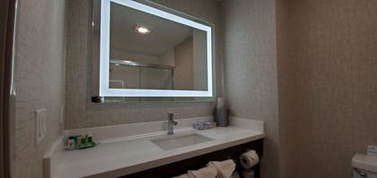 Bathroom | Holiday Inn Express & Suites Lake Forest