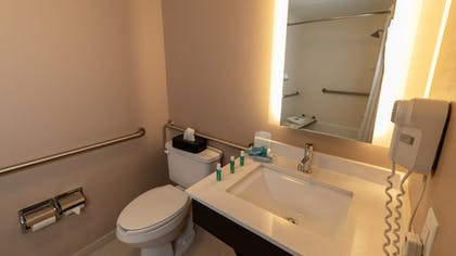 Bathroom | Holiday Inn Express Hotel & Suites Birmingham-Irondale(East)