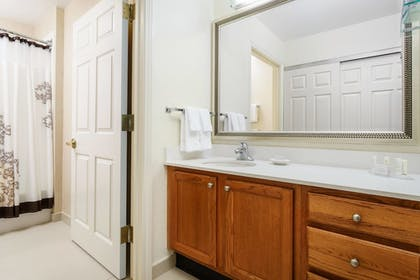 Bathroom | Residence Inn by Marriott Houston Downtown/Convention Center