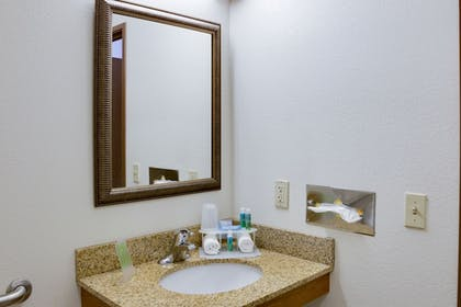 Bathroom | Holiday Inn Express Sarasota East - I-75