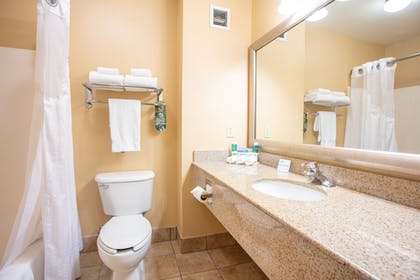 Bathroom | Holiday Inn Express & Suites Richland