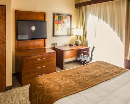 Guestroom |  | Quality Suites
