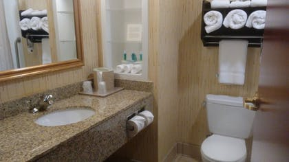 Bathroom | Holiday Inn Express Hotel & Suites Manchester Airport