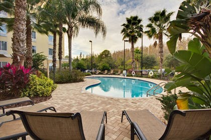 BBQ/Picnic Area | Holiday Inn Express Hotel & Suites New Tampa I-75