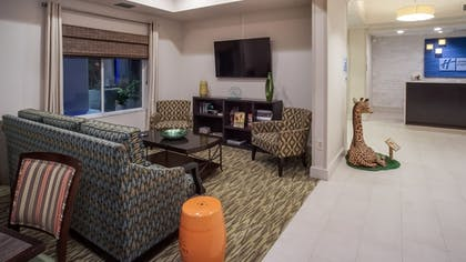 Lobby Sitting Area | Holiday Inn Express Hotel & Suites New Tampa I-75