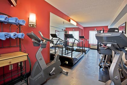 Fitness Facility | Holiday Inn Express Hotel & Suites New Tampa I-75