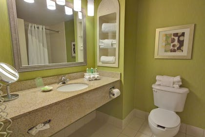 Bathroom | Holiday Inn Express Hotel & Suites New Tampa I-75