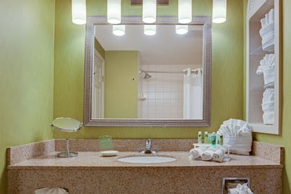 In-Room Amenity | Holiday Inn Express Hotel & Suites New Tampa I-75