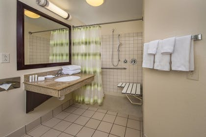 Bathroom Shower | Springhill Suites by Marriott State College