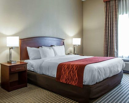 Room   Comfort Inn And Suites
