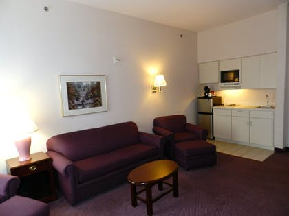 Living Area | Ashmore Inn & Suites