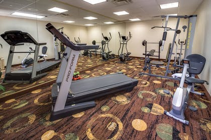 Fitness Facility | Ashmore Inn & Suites