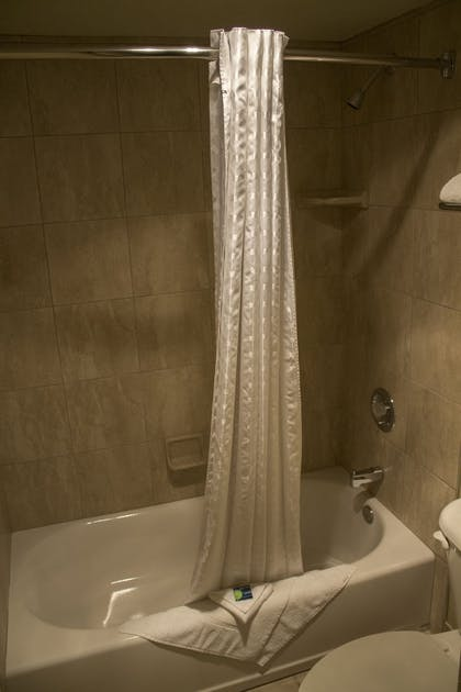 Bathroom Shower | Le Ritz Hotel and Suites