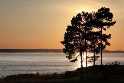 Lake View | Cypress Bend Resort Best Western Premier Collection