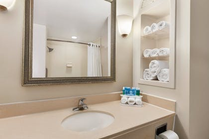 Bathroom | Holiday Inn Express Hotel & Suites Florence I-95 at Hwy 327