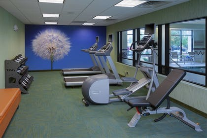 Sports Facility | SpringHill Suites by Marriott Lansing West