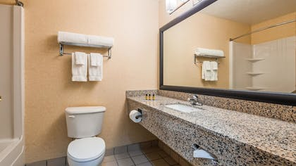 Bathroom | Best Western Plus Howe Inn
