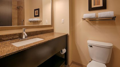 Bathroom | Best Western Plus Atrium Inn & Suites