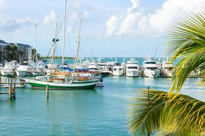 View from Property | The Marker Waterfront Resort Key West