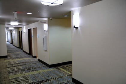 Hallway | Holiday Inn Express & Suites Houston NW - Tomball Area