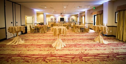 Ballroom | Holiday Inn Express & Suites Denver South - Castle Rock