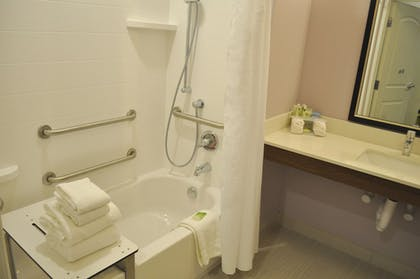 Bathroom   Holiday Inn Express & Suites Price
