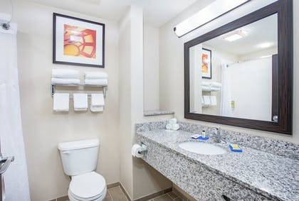 Bathroom | Holiday Inn Express & Suites Glasgow