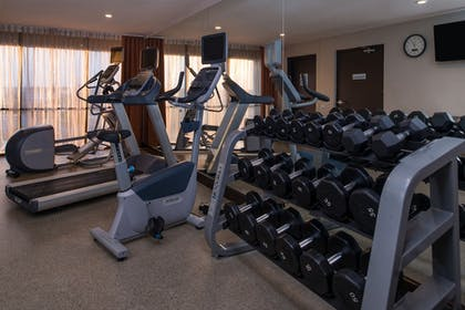 Fitness Facility | Holiday Inn Express & Suites San Antonio Medical-Six Flags