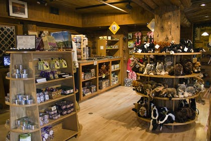 Gift Shop | Old Faithful Inn - Inside the Park