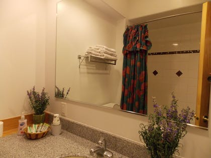 Bathroom Sink | Fairbanks Extended Stay