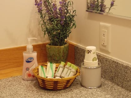 Bathroom Amenities | Fairbanks Extended Stay