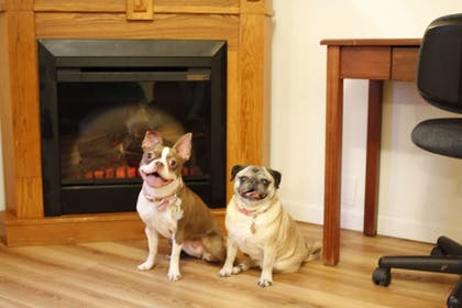 Pet-Friendly | Fairbanks Extended Stay