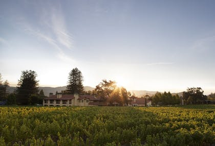 Featured Image | Napa Valley Lodge