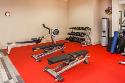 Fitness Facility | Holiday Inn Express & Suites Litchfield West