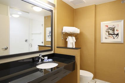 Bathroom | Fairfield Inn & Suites El Paso Airport