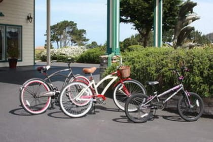 Bicycling | Emerald Dolphin Inn