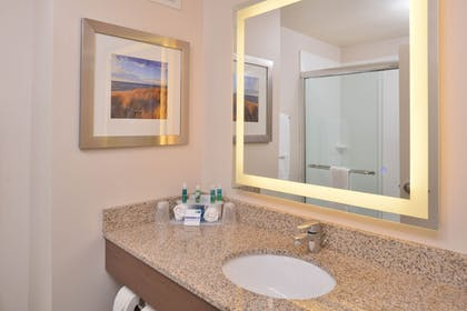 In-Room Amenity   Holiday Inn Express & Suites Dearborn SW - Detroit Area