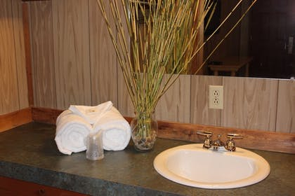 Bathroom Sink | The Rustic Inn