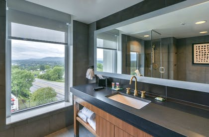 Bathroom Sink | Hyatt Place Asheville/Downtown