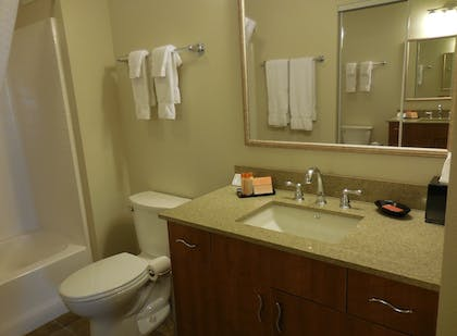 Bathroom | Ledgestone Hotel Elko