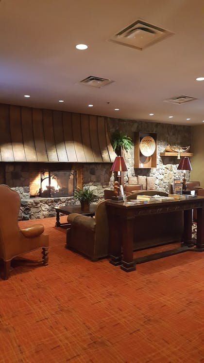 Fireplace | Odawa Hotel