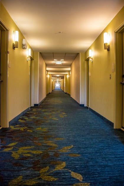 Hotel Interior | Candlewood Suites Overland Park