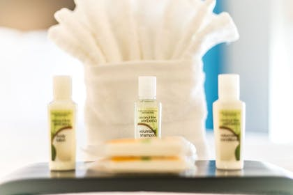 Bathroom Amenities | Holiday Inn Hotel & Suites Chattanooga Downtown