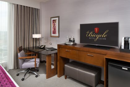 Television | The Bicycle Hotel & Casino